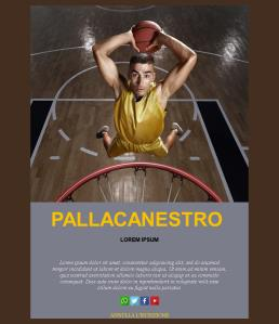Basketball-basic-01 (IT)