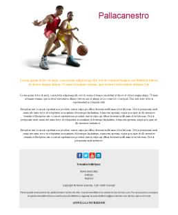 Basketball-medium-03 (IT)